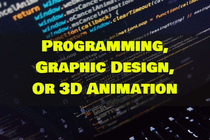 Programming, Graphic Design, Or 3D Animation